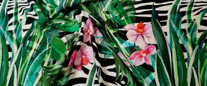 Dolce & Gabbana - Blätter auf Zebra