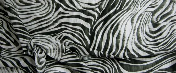 animal print - Zebra
