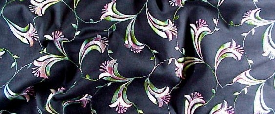 Blüten Trompete auf schwarz