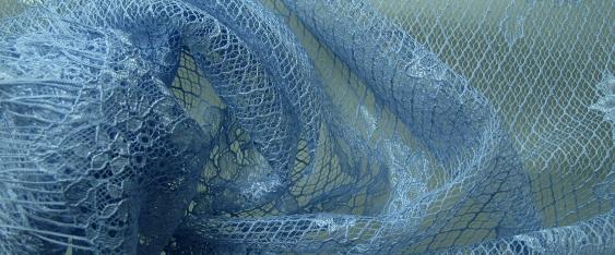 Spitze in Rapporten - blau