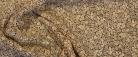 Viskose - beige Blümchen