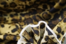 Seide - animalprint mit Bordüre