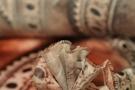 Seidenstretch - Lederteilprint
