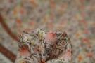 Viskose - Bordürenprint mit Blumen