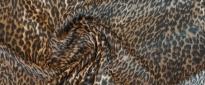 Cavalli - animal-Print