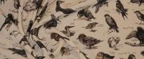 Viskosestretch - Vögel