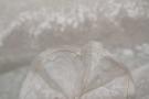 Seidensamt - Blumen-Ausbrenner