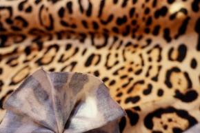 Viskosejersey mit Schurwolle - animal