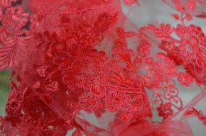 Gimpenspitze - erdbeer